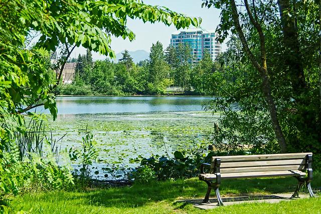 The Lake at Abbotsford BC.