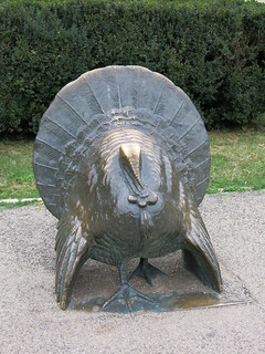 Turkey statue in Bucharest