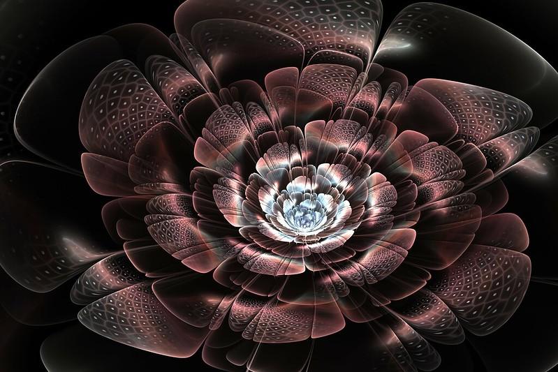 Обои цветок, лепестки, свет, линии, пелена, дым картинки на рабочий стол, фото скачать бесплатно