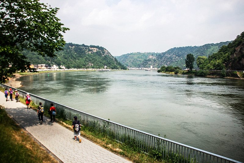 萊茵河St. Goar彎道 1