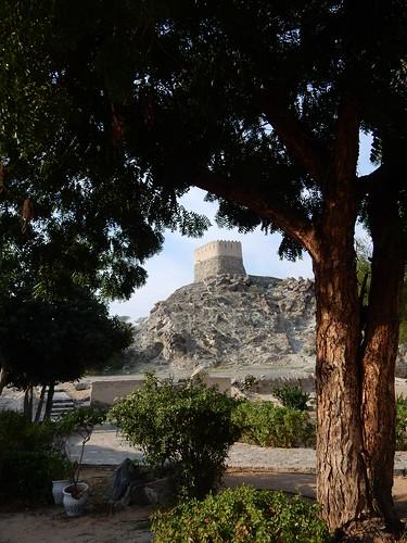 Fujairah - Al Badiyah Mosque - 1