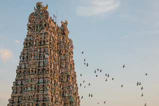 Madurai, City of Temples | by Geraint Rowland Photography