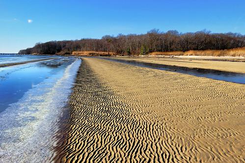 tidewater saltwater marsh wetland chesapeake bay grasses frozen landscape north point state park baltimore county maryland winter cbf