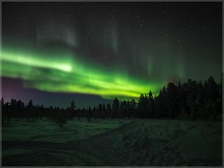 Aurora borealis_93058 | by uwe_cani