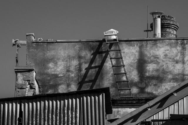 urbānā augša I   /   urban hights I