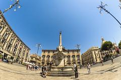 Catania - Piazza duomo e Fontana dellelefante