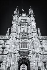 Universitas Sydney