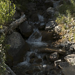 Stream in Granite Canyon