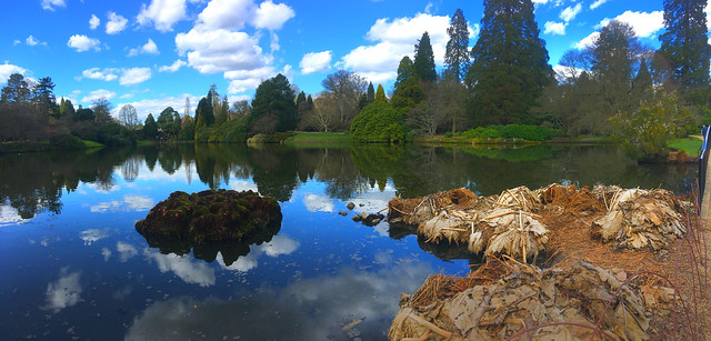 Sheffield Park in March