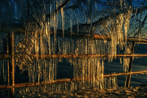 ice icicles frozen fence posts poles tree branches lakepark milwaukeewisconsin lakemichigan cold icy winter wintry hanging dangling morninglight february landscape lakefront thegreatlakes nature outdoors walkway path formations fangs daggers shards crystal transparent backlight patterns vertical hff happyfencefriday archives nikond5100 tamron18270 photoshopbyfehlfarben thanksbinexo