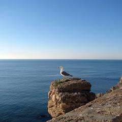 Vigilando el Atlántico...