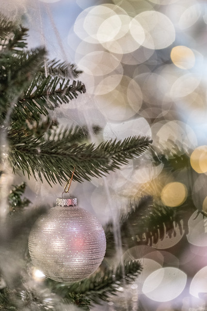 Frederik Meijer Gardens Holiday Traditions 2018