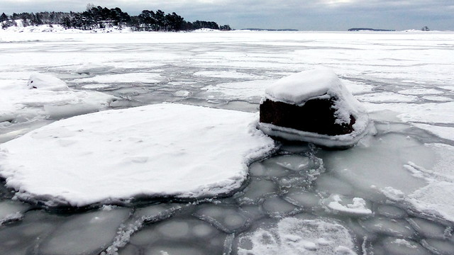 Cloudy January morning the seashore (Kallahdenniemi, Helsinki, 20190119)