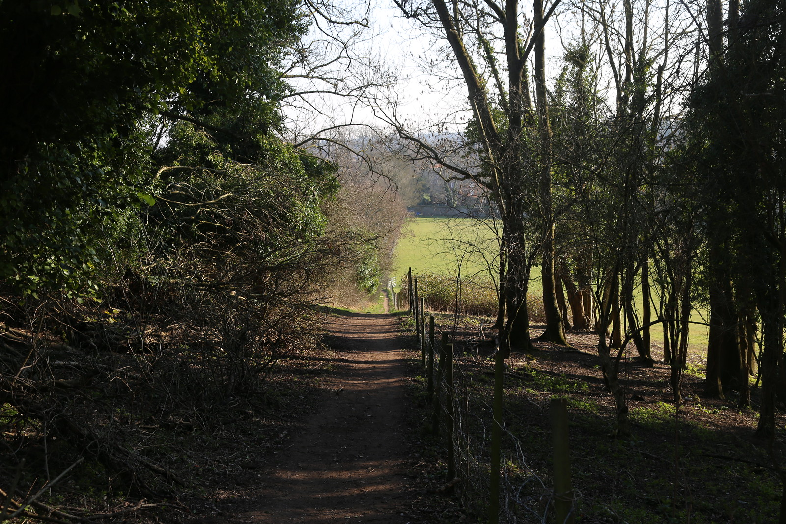 Path by fence - near Henley - North of Henley