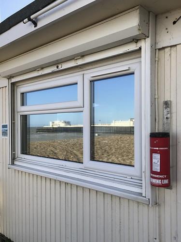Week 12 Window Reflections | by MaurM1