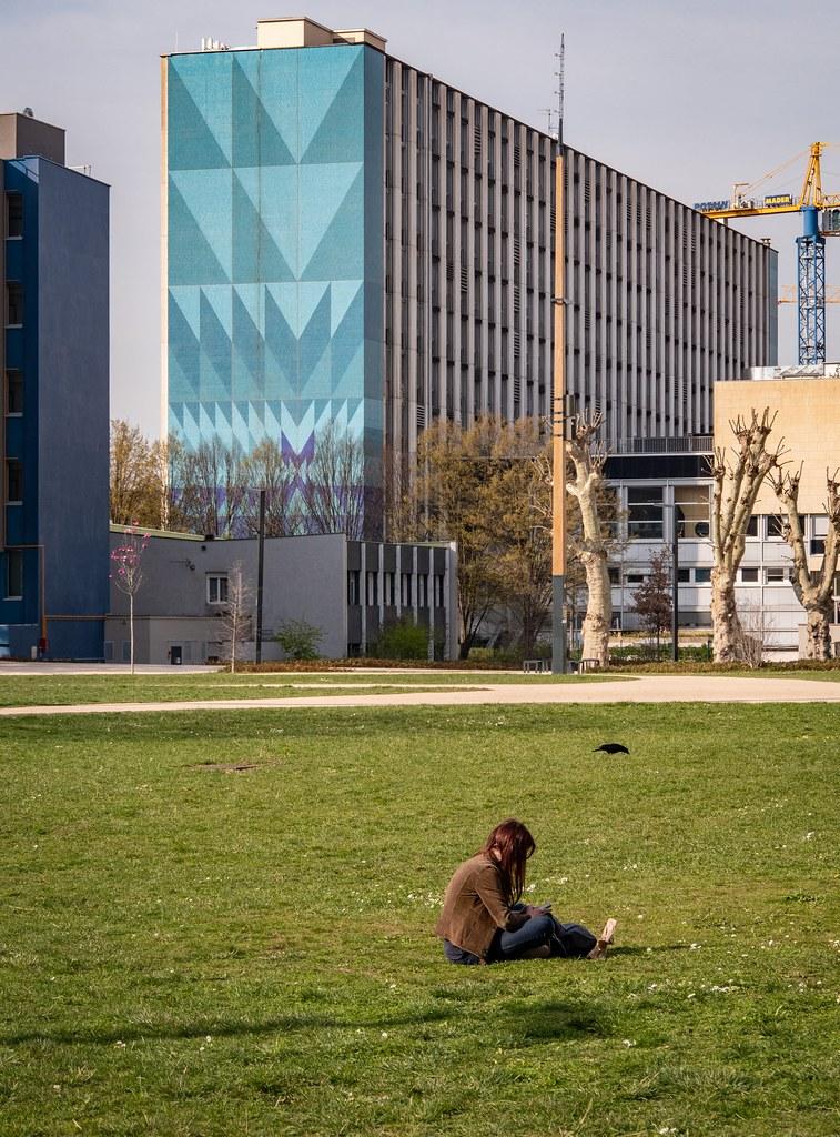 Au soleil sur le campus... 47401499712_f695c2082d_b