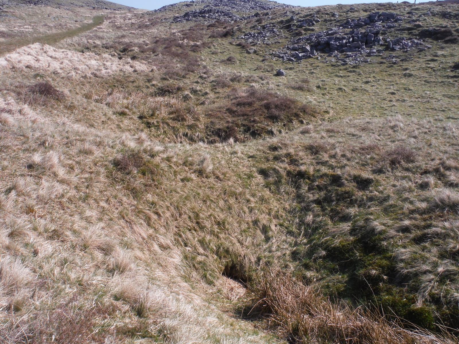 Shakeholes SWC Walk 307 - Fforest Fawr Traverse (Craig y Nos to Llwyn-y-celyn) [Beacons Way Route]