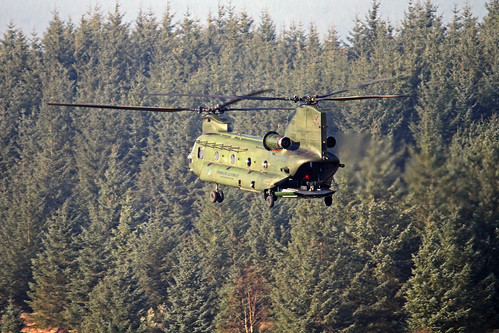 Royal Netherlands Air Force Chinook (Grizzly Flight) (19) | by Danny Banks 2019