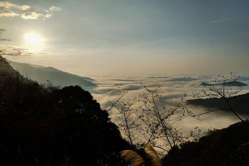 taiwan hsinchu hsinchucounty jianshi jianshih mountain mountains mists mist clouds cloud cloudy sky sun sunset sunlight sunshine spectacular landscape tree trees branch branches golden