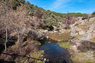 Paseo por el río Aceña   by Jexweber.fotos