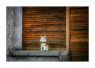 noch ein Türchen - dann komm' ICH ... | by WolfiWolf-presents-WolfiWolf