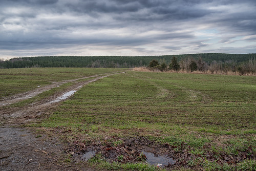 Track Across a Field | by Vincent1825