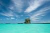 Karst island. Palau