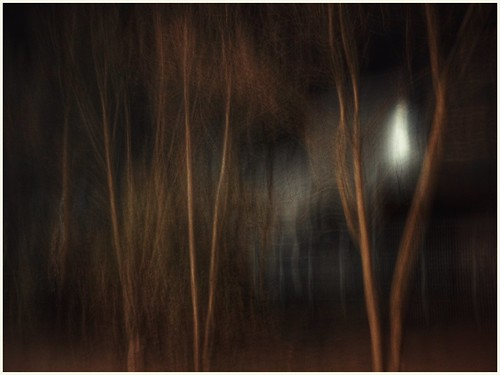 abstract trees night nighttime longexposure blurred outdoors outside icm image imageof imagecapture photography photoof