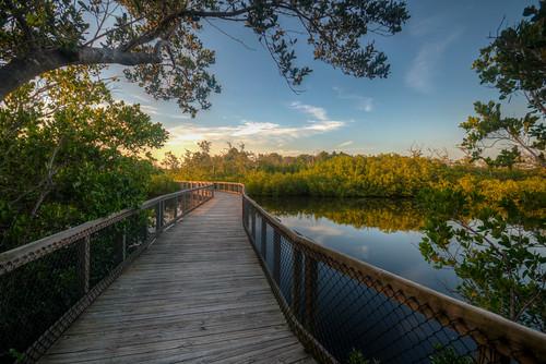 florida sunset water boardwalk preserve emerson point landscape palmettoflorida emersonpoint