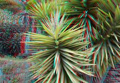 Plant Alcazaba Malaga Spain 3D