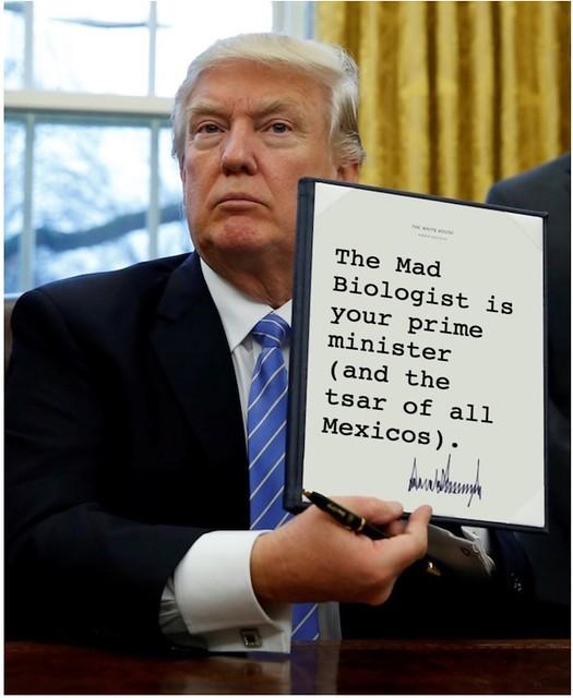 Trump_primeminister