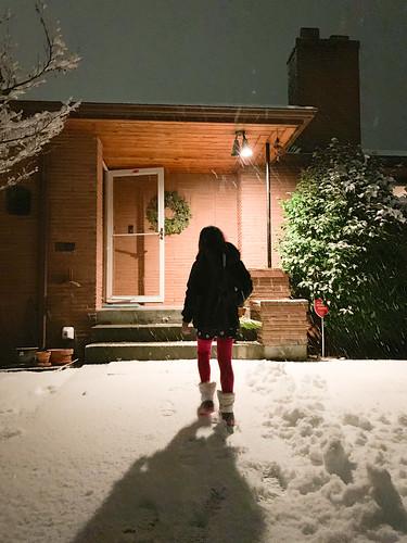 20190208 snowzilla-6   by schnell foto