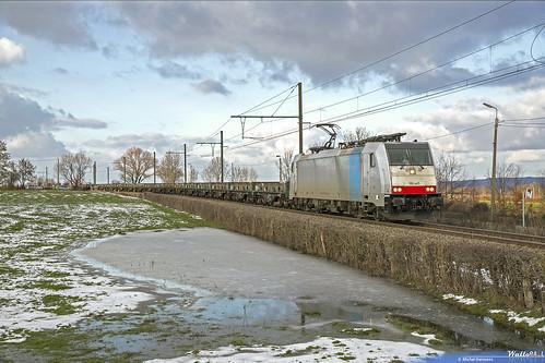 186 445 . LNS . E 48515 . Ruyff (Welkenraedt) . 03.02.19.