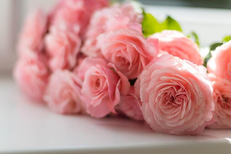 Обои розы, букет, розовые, боке картинки на рабочий стол, раздел цветы - скачать