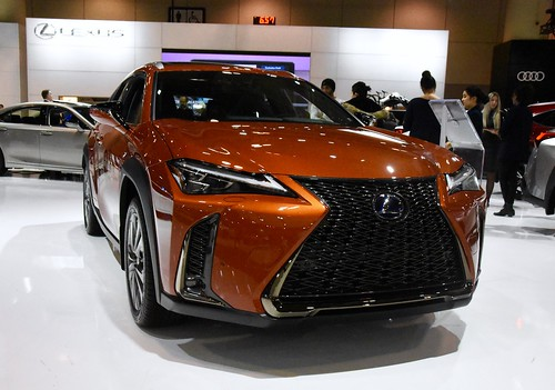 2020 Lexus UX 250h Photo
