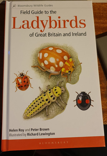 Field Guide to Ladybirds of Great Britain and Ireland | by markhows