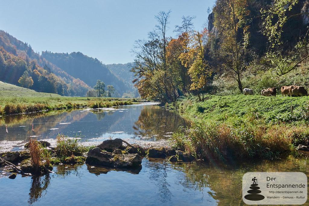 Die Donau am Jägerhaus