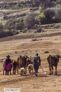 maras, cusco | by Photo Peru Stock