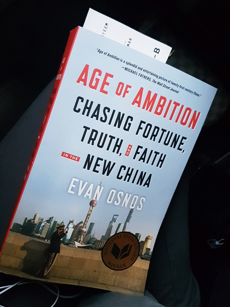 Age of Ambition book