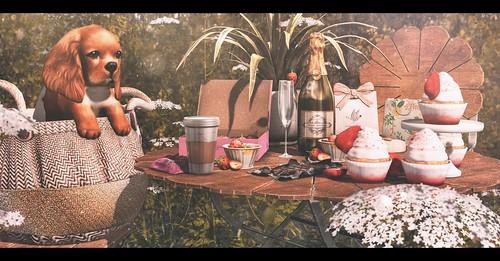 Sunday Brunch.   by Brandi Monroe