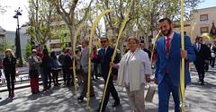 procesion-domingo-de-ramos-tomelloso-la-borriquilla-13