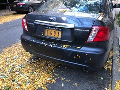 NYC musical license plate