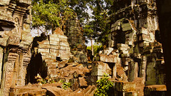 Flashback Thursday: Ta Prohm, Cambodia