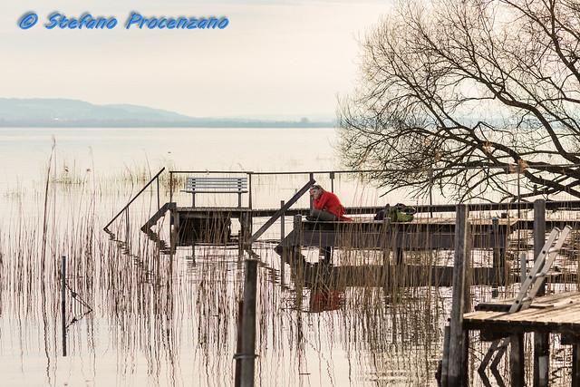 Ammirando il Lago di Morat a Bas-Vully