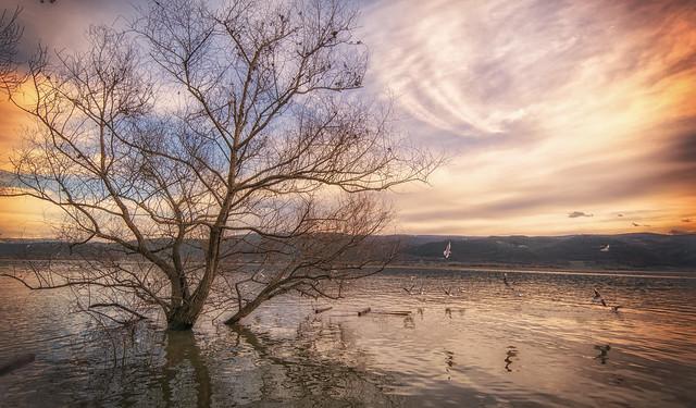 Ulubat Lake Turkey