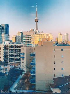 SPRING IN TORONTO | by Luciana Couto