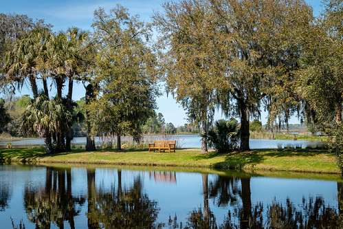 water bench reflection landscape serene middleton plantation charelston charlestonsc charleston wide canon 70d