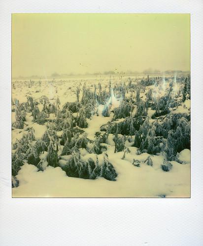 Winter ... | by @necDOT