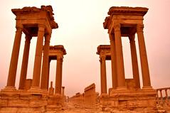 PALMIRA, SIRIA 2308 2-1-2011