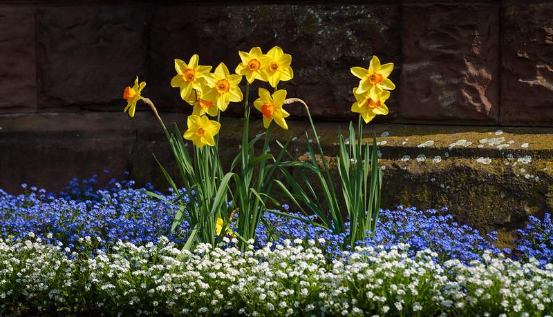Gelb-Blau-Weiß